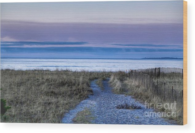 Maine Wood Print featuring the photograph Pink Sky Sunrise by Colleen Mars
