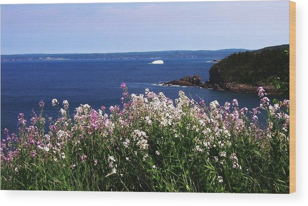 Photograph Iceberg Wild Flower Atlantic Ocean Newfoundland Wood Print featuring the photograph Wild Flowers And Iceberg by Seon-Jeong Kim