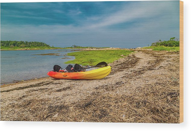 Goat Wood Print featuring the photograph Kayaking Adventure In Maine by Betsy Knapp