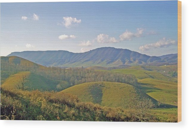 Mountain Wood Print featuring the photograph Virginia Mountains by Cynthia Guinn