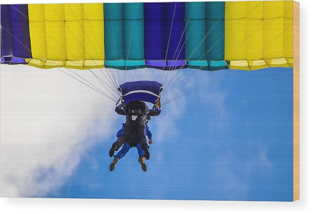 Wood Print featuring the photograph Skydivers by Brian Stevens
