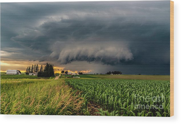 Storm Wood Print featuring the photograph Approaching Storm by Willard Sharp