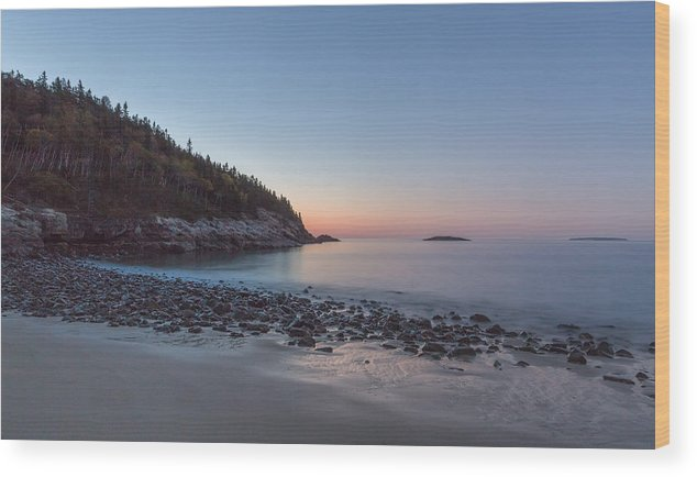 Acadia Wood Print featuring the photograph Morning Bliss by Arti Panchal