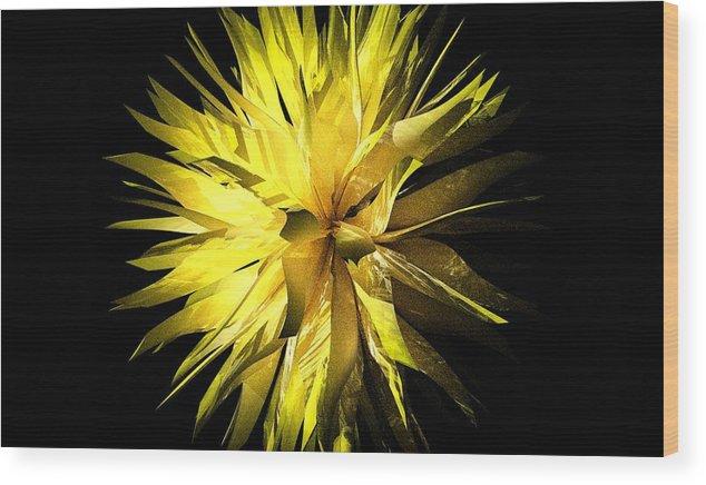 Aiden Humphrey Wood Print featuring the digital art Pervigeo 1 by Aiden Humphrey