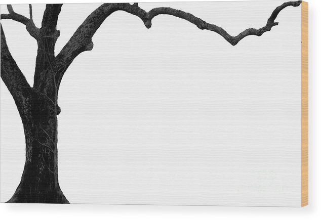 Tree Wood Print featuring the photograph The Tree by Amanda Barcon