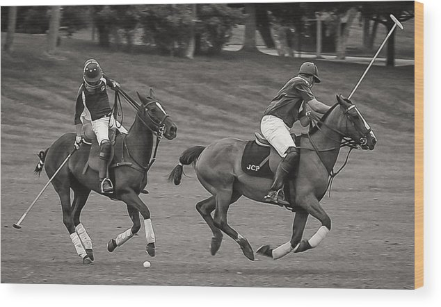 Thoroughbred Horse Horses Stick Ball Jockey Jockeys Helmets Jerseys Polo Match Wood Print featuring the photograph Polo Match by Richard Marquardt
