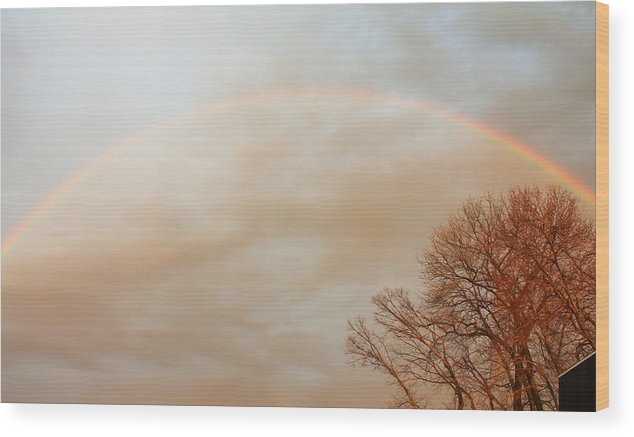 Rainbow Wood Print featuring the photograph After The Rain by Bette Bresette