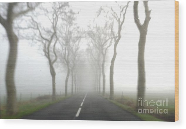 Fog Wood Print featuring the photograph Destination Unknown by France Art