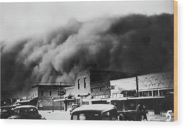 1934 Wood Print featuring the photograph Drought, 1934 by Granger