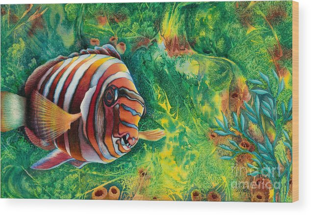 Tropical Fish Prints Wood Print featuring the painting Harlequin Tuskfish by Mara Mattia