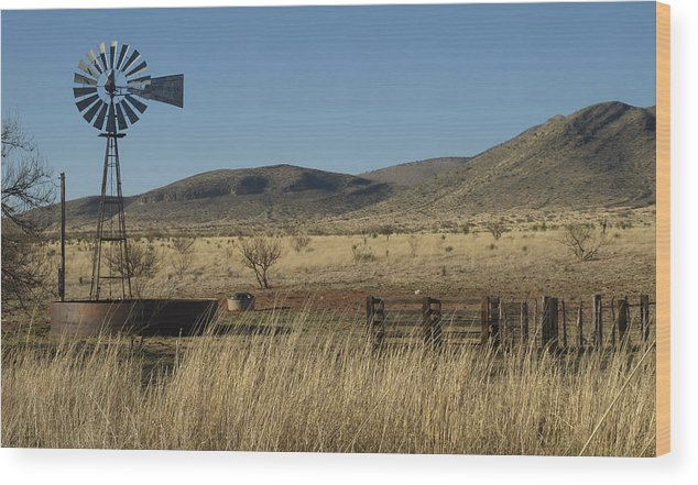 Desert Wood Print featuring the photograph Lonely by Richard Brown