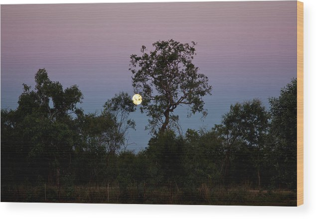 Bush Wood Print featuring the photograph Moon Rise by Carole Hinding