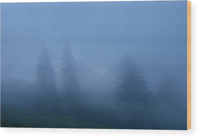Spruce Wood Print featuring the photograph Morning Mist by Minartesia