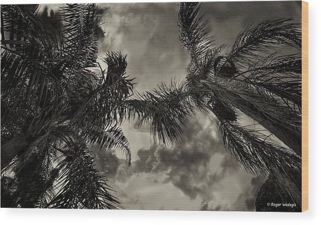 Palms Wood Print featuring the photograph Storm Coming by Roger Wedegis