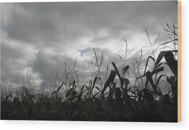 Clouds Wood Print featuring the photograph Eerie Field by Karen Jordan