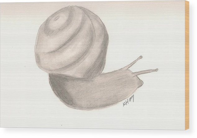 Snail Wood Print featuring the drawing Snail by Kristen Hurley