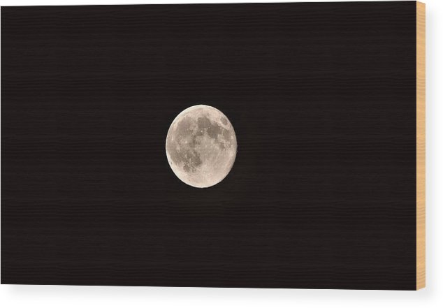 Moon Wood Print featuring the photograph Moonshine by Cassandra Dice
