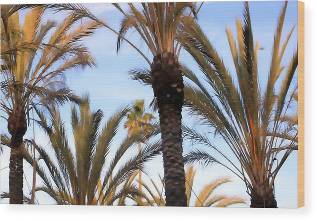 Palm Wood Print featuring the photograph Palms 0758 by Edward Ruth