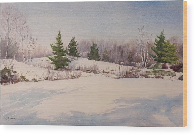 Shadows Wood Print featuring the painting Shadows On Snow In The Canadian Shield by Debbie Homewood