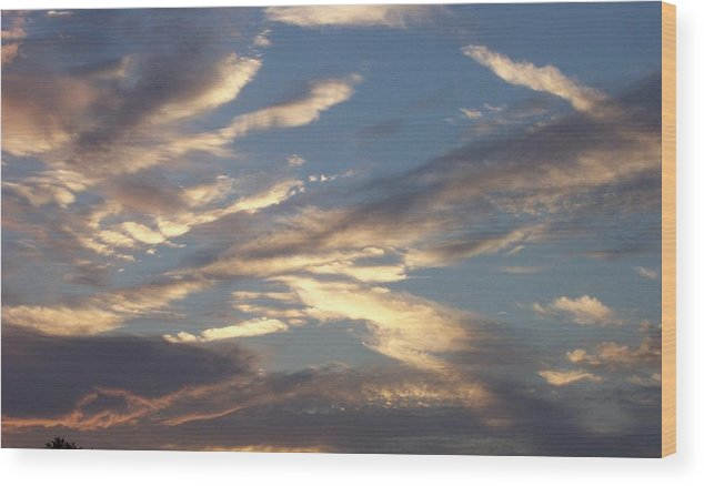 Landscapes Wood Print featuring the print Southern Skies by Beverly Baxter