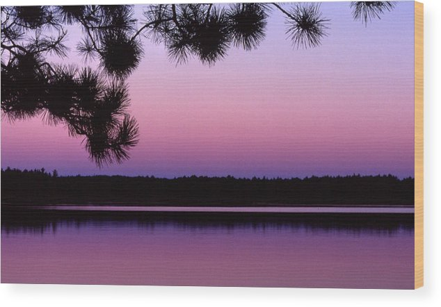 Sunset Wood Print featuring the photograph Sunset And Pine 2 by Lyle Crump