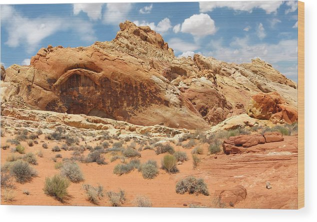 Landscape Wood Print featuring the photograph Valley Of Fire by Mary Lane
