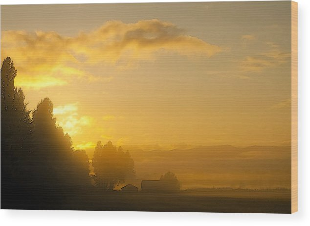 Landscape Wood Print featuring the photograph Misty Farm by Randolph Fritz
