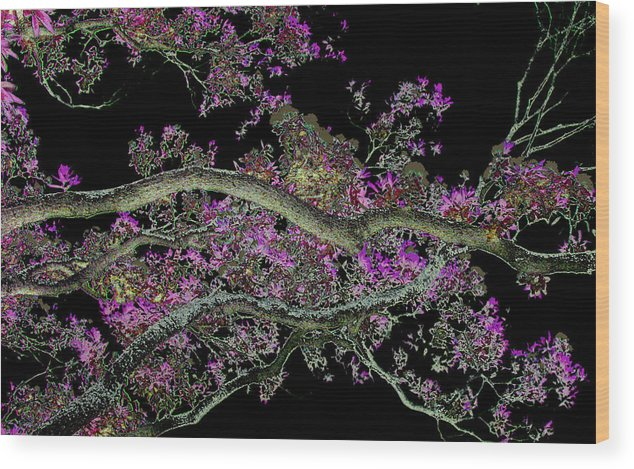 Abstract Wood Print featuring the digital art Night Blooms by Jack Bowman