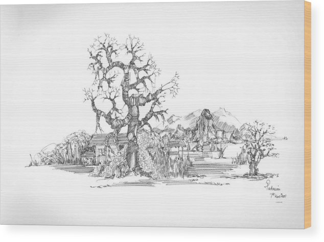 Landscape Wood Print featuring the drawing Tree And Some Rocks by Padamvir Singh
