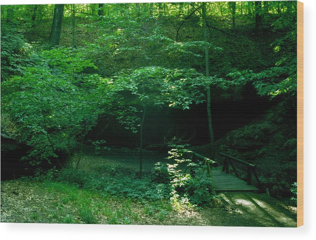 Trail Wood Print featuring the photograph 042407-45 by Mike Davis