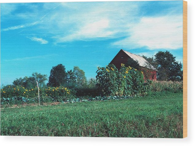 Barn Wood Print featuring the photograph 060507-30 by Mike Davis