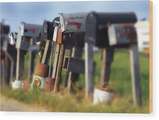 Photography Wood Print featuring the photograph Mailboxes by Craig Incardone
