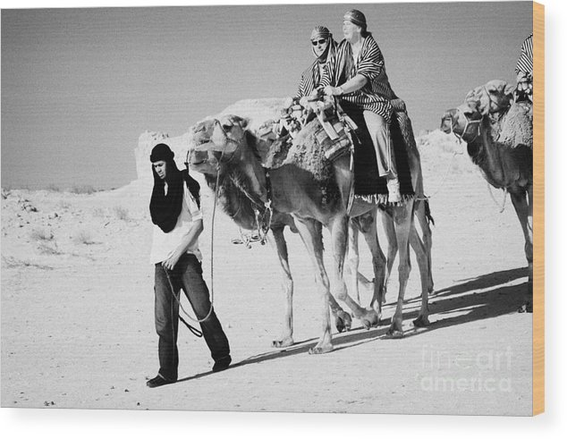 Tunisia Wood Print featuring the photograph bedouin guide in modern clothing leads british tourists riding camels and wearing desert clothes into the sahara desert at Douz Tunisia by Joe Fox