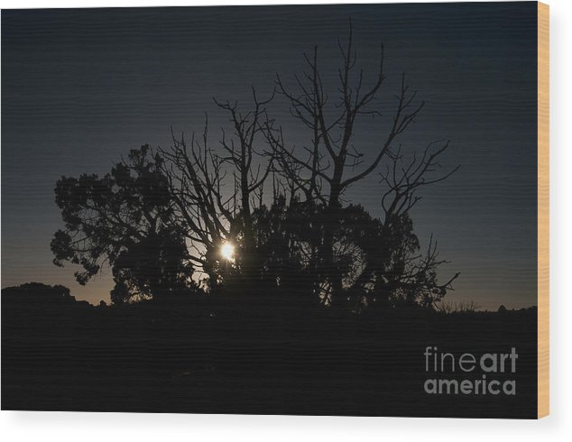 Dusk Wood Print featuring the photograph Dusk by Andi Poland