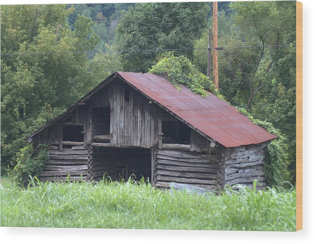 Kentucky Country Farm Barn Rusty Roof Grass And Vines Outdated Unused Planks Logs Wood Print featuring the photograph Country Farm Life by Becky Arvin