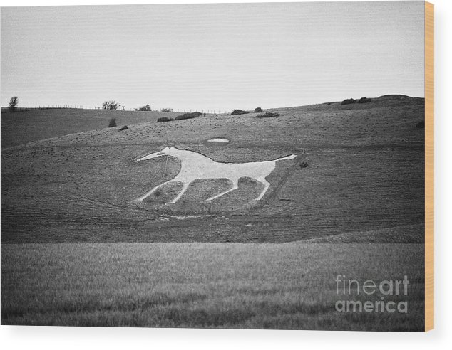 Alton Barnes Wood Print featuring the photograph Alton Barnes White Horse Wiltshire England Uk by Joe Fox