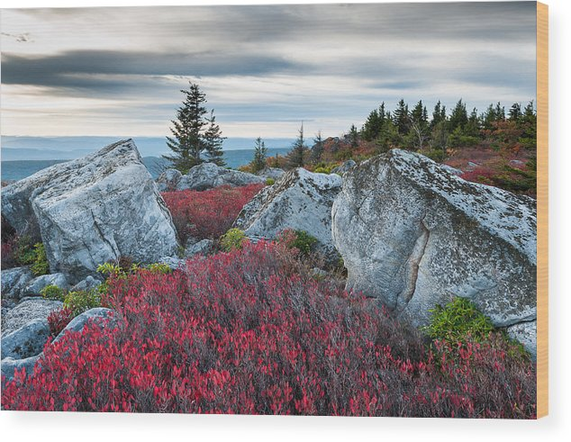 West Virginia Wood Print featuring the photograph Bear Rocks Preserve West Virginia by Mark VanDyke