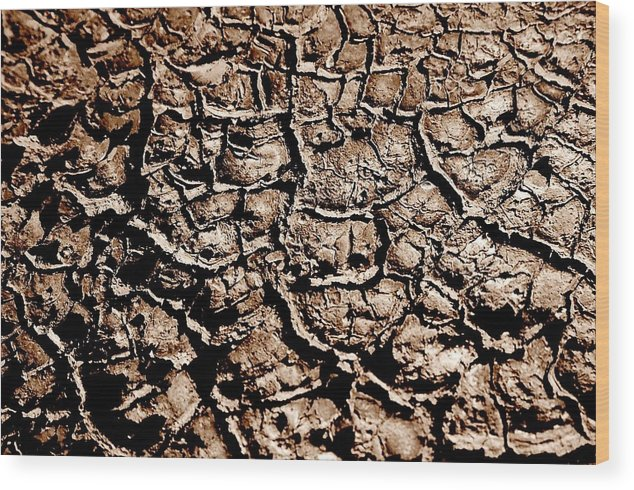 Landscape Wood Print featuring the photograph Cracked Earth by Caroline Clark