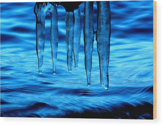 Lake Tahoe Wood Print featuring the photograph Drink Tahoe Tap by Sean Sarsfield