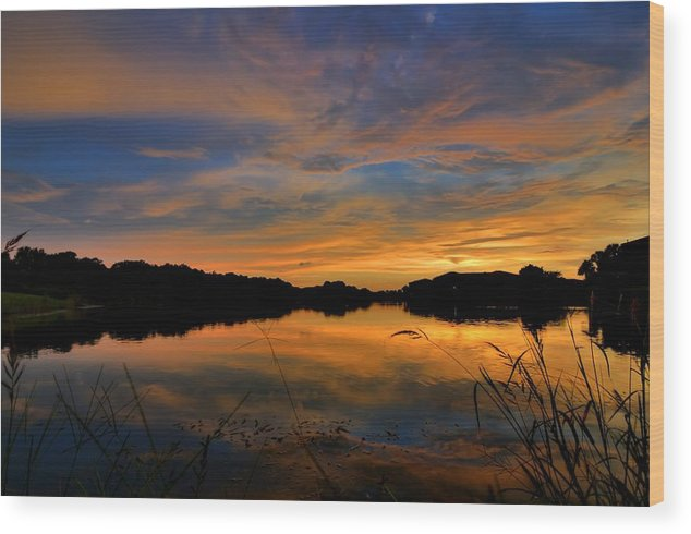 Landscape Wood Print featuring the photograph Ellenton Lake Sunset 02 by Jonathan Sabin