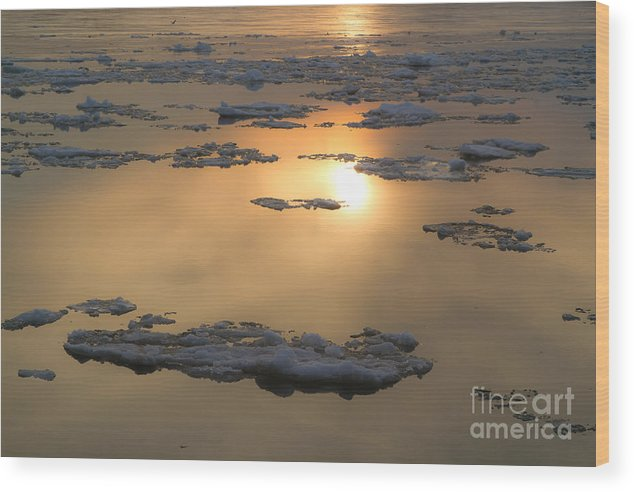 Water Wood Print featuring the photograph Lonely Night by Chuck Alaimo
