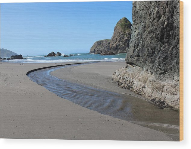 Stream Wood Print featuring the photograph Low Tide by Paul Shoaf