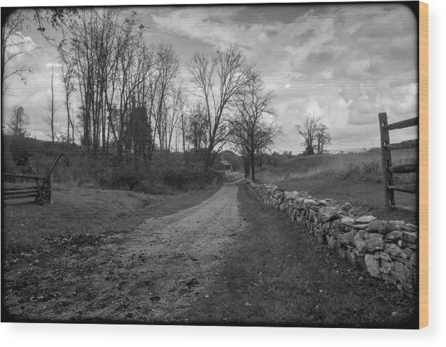 Antietam Wood Print featuring the photograph 101514-230bw by Mike Davis