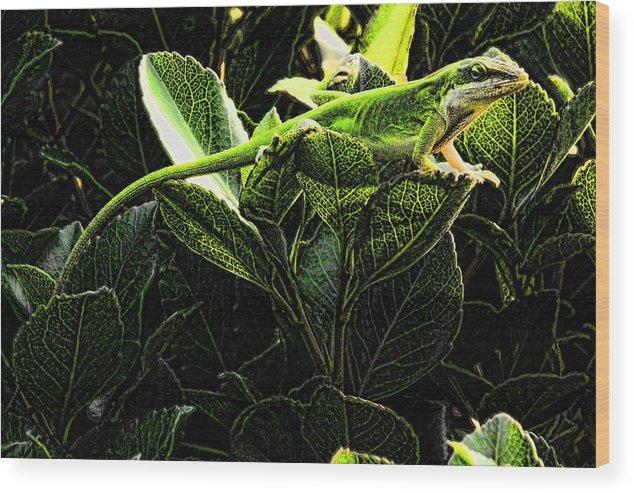 Lizard Green Wood Print featuring the digital art Fractal Nature South Carolina Green Lizard by Robert Rhoads