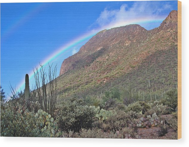 Landscape Wood Print featuring the photograph Glorious by KandS PhotoArt