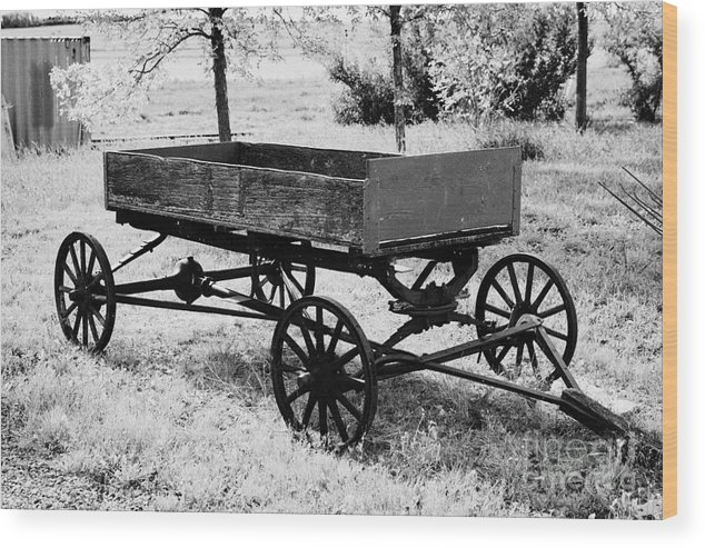 old wooden and metal farm wagon made from vehicle wheels and axle in  depression era leader Saskatche Wood Print
