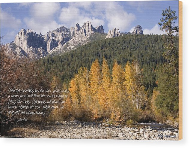 Castle Wood Print featuring the photograph Castle Crags Autumn by Mick Anderson