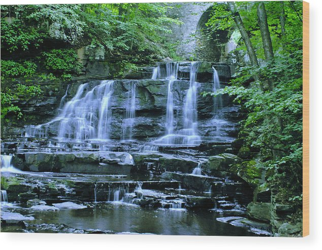 Waterfalls Wood Print featuring the photograph Little Niagara by Sherry Sparks
