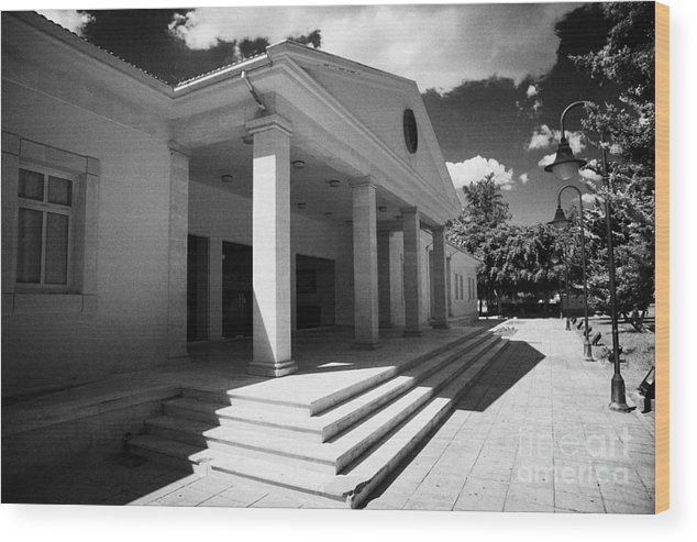 Museum Wood Print featuring the photograph Museum Of Natural History In Larnaca Republic Of Cyprus Europe by Joe Fox
