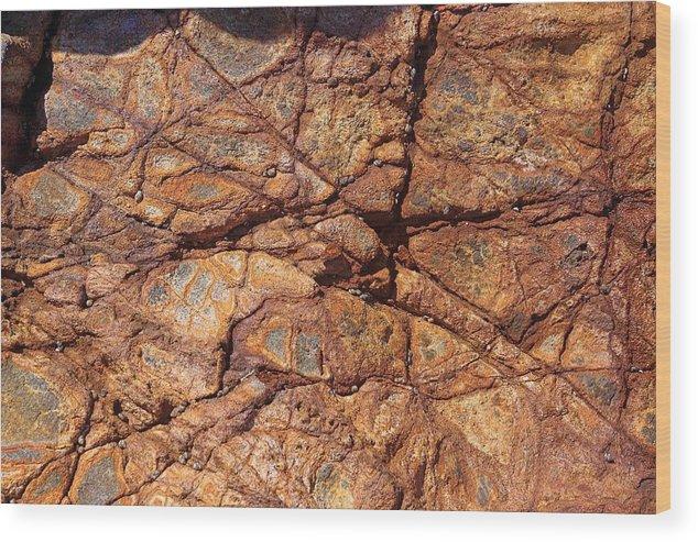 Stone Texture Wood Print featuring the photograph Stone Texture by Viktor Savchenko